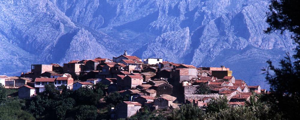 village_07-1000x400